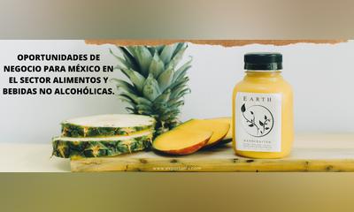 OPORTUNIDADES DE NEGOCIO PARA MÉXICO EN EL SECTOR ALIMENTOS Y BEBIDAS NO ALCOHÓLICAS