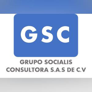 GRUPO SOCIALIS CONSULTORA SAS de CVnormalized
