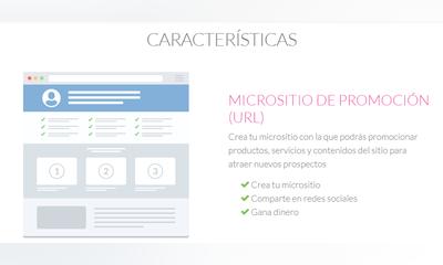 Manual App Promotor